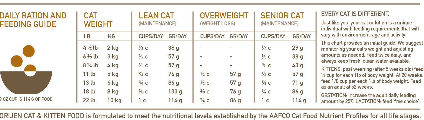 ORIJEN Cat & Kitten Biologically Appropriate Cat Food Feeding Chart